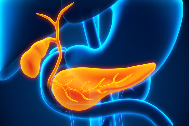 Gall Bladder and Bile Duct Health