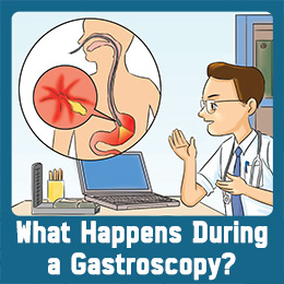 What happens during a gastroscopy?