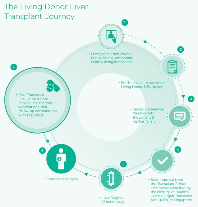an introduction to the living liver donation